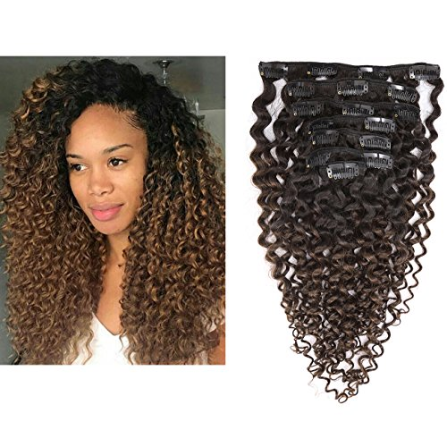Clip in Human Hair Extensions Afro Jerry Curly 3B 3C Real Hair Clip in Extensions For Black Women Natural Black Color 100 Brazilian African Hair Extensions 10-22 inch 20 inch Jerry Curly 1B4